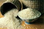 Vergelijk hier rijstkokers!